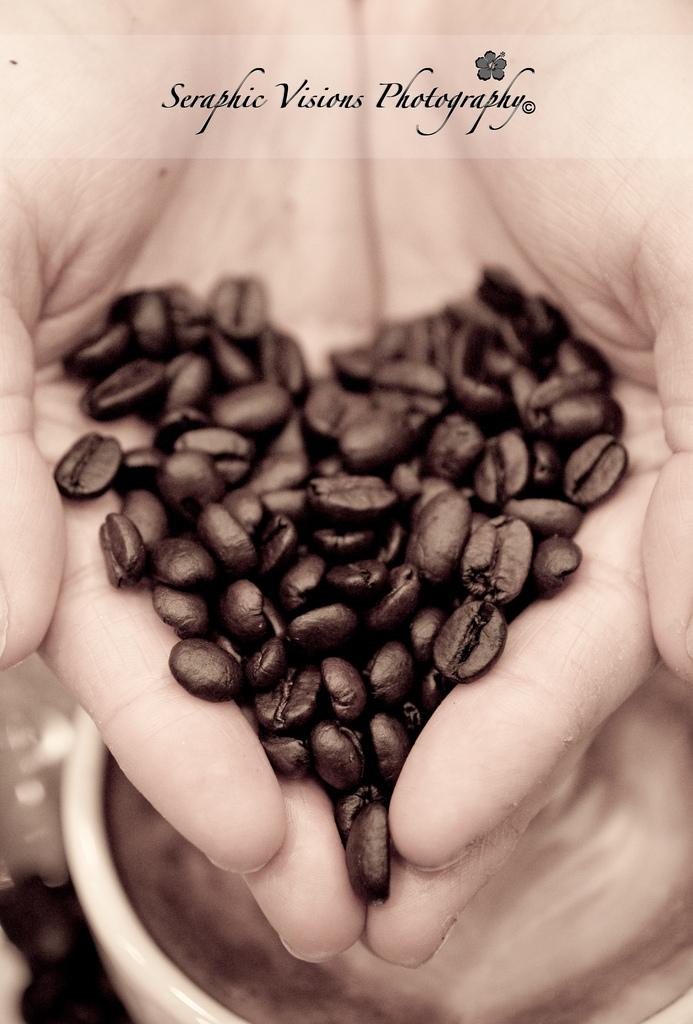 Bean Heart