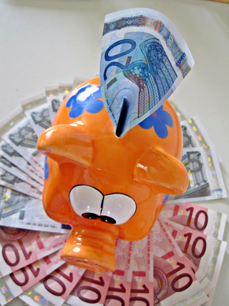 Euro Notes and Piggy Bank