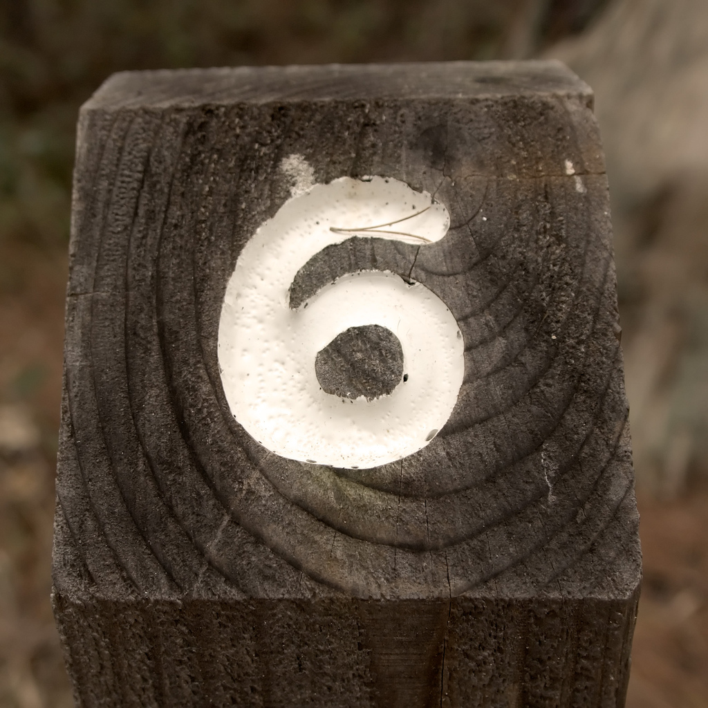 Nature's Number 6